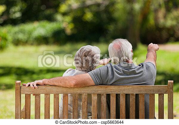 séance, couple, dos, banc, leur, appareil photo - csp5663644
