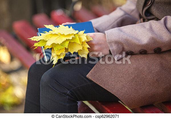 séance, parc, jeune, banc, automne, girl, jour - csp62962071