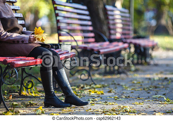 séance, parc, jeune, banc, automne, girl, jour - csp62962143