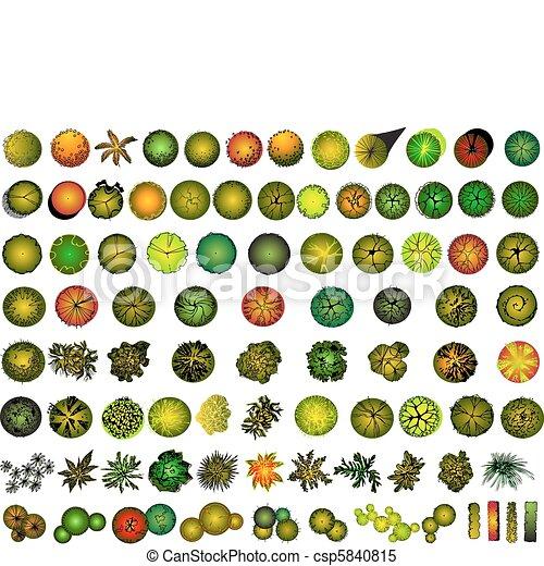Un conjunto de símbolos de la copa del árbol - csp5840815