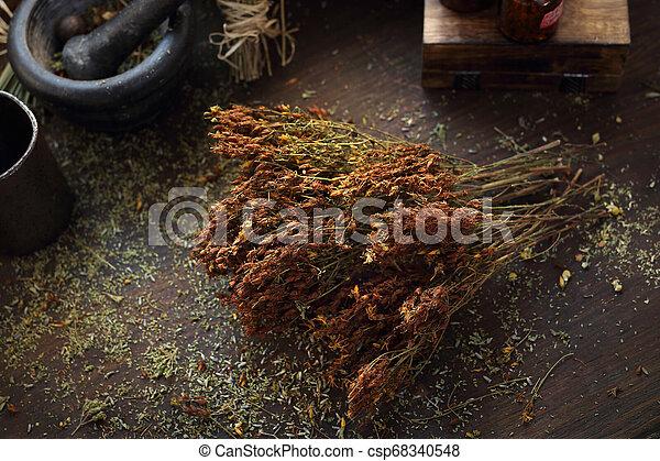 Hierba seca de San Juan, hierbas en medicina y cocina. - csp68340548