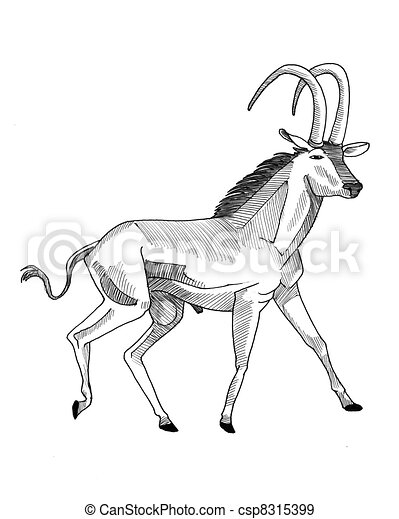 Sable antelope. Ink drawing of a sable antelope trotting.