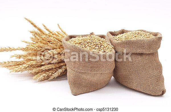 Sacks of wheat grains - csp5131230