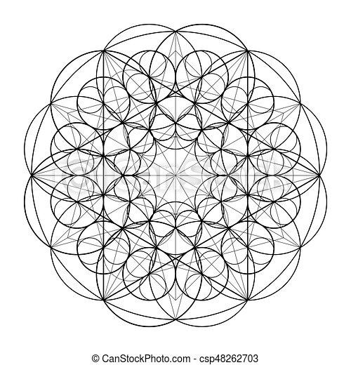 Sacred Geometry  Golden Section  Vector 10 eps