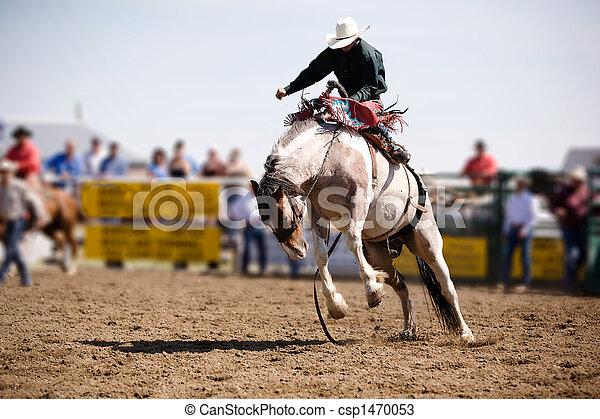 Saddle Bronc - csp1470053