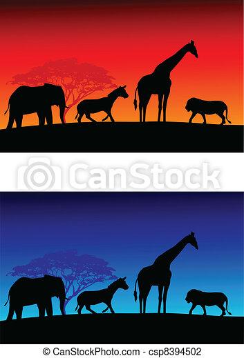 Safari background - csp8394502