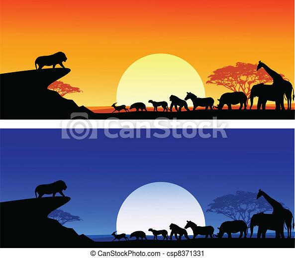 Safari silhouette - csp8371331