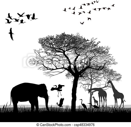 Safari with giraffes, herons, geese and the elephant - csp48334976