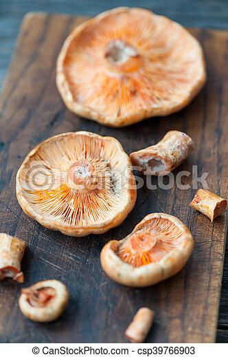 Saffron Milk Cap musrooms - csp39766903