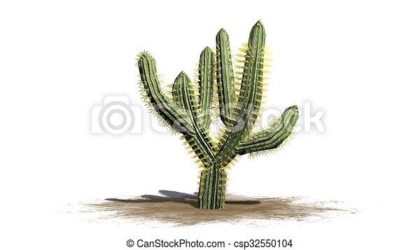 Ungewöhnlich Kaktus Malblatt Zeitgenössisch - Beispiel ...