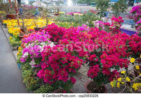 Mercado de flores Saigón en Año Nuevo Lunar, Vietnam - csp20833226