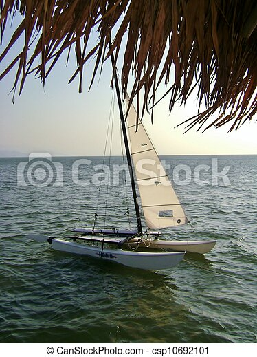 sailboat - csp10692101