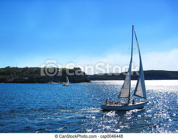 Sailing - csp0046448