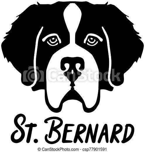 Saint Bernard head with name - csp77901591