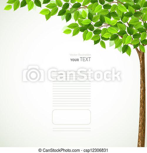saison, arbre - csp12306831