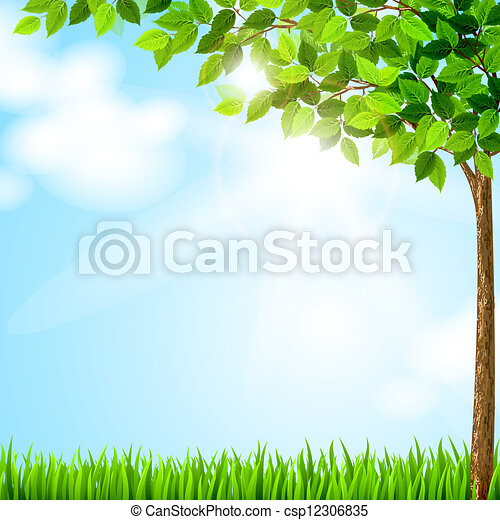 saison, arbre - csp12306835