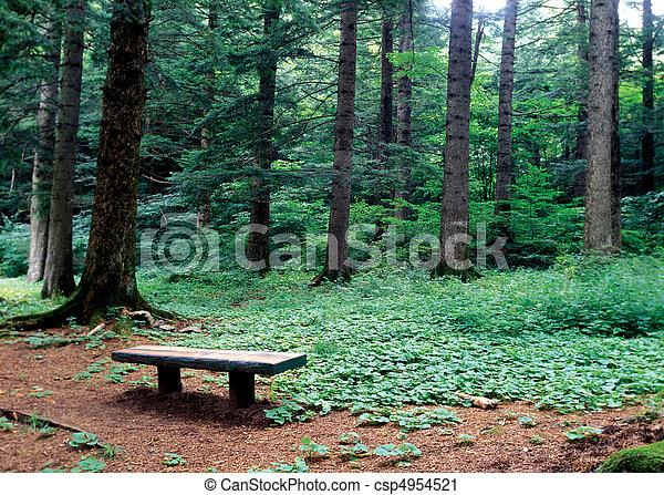 saisons, nature - csp4954521
