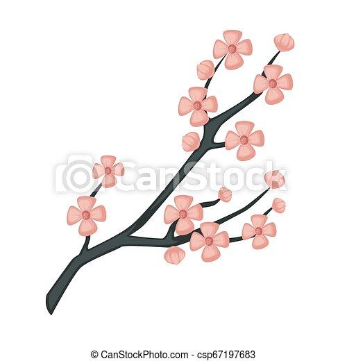 Sakura branch spring cherry blossom isolated Japanese symbol - csp67197683