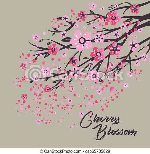 Sakura japan cherry branch with blooming flowers vector illustration. - csp65735829
