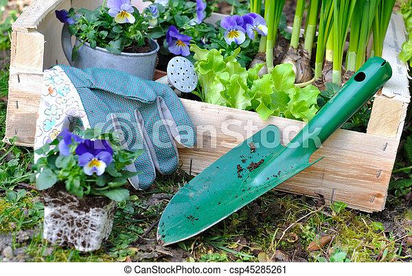 fleurs planter great en effet sils ne sont pas les plus. Black Bedroom Furniture Sets. Home Design Ideas