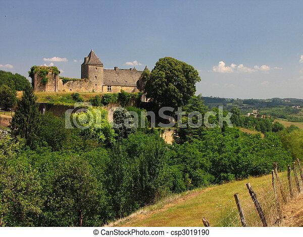 Salignac, Castle - csp3019190