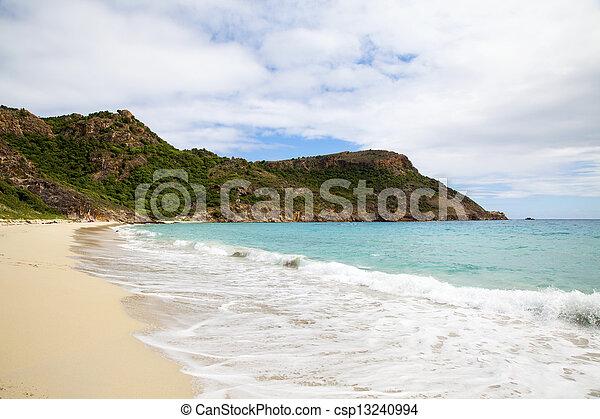 Saline beach, St. Barths - csp13240994