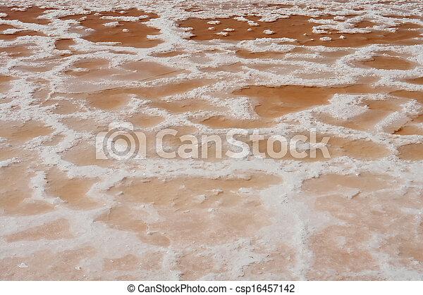 Textura de pantanos salinos de la producción de sal de primos - csp16457142