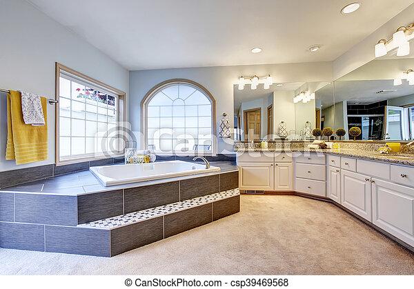 salle bains, compteur, long, grand, maître, luxe, miroir, baignoire