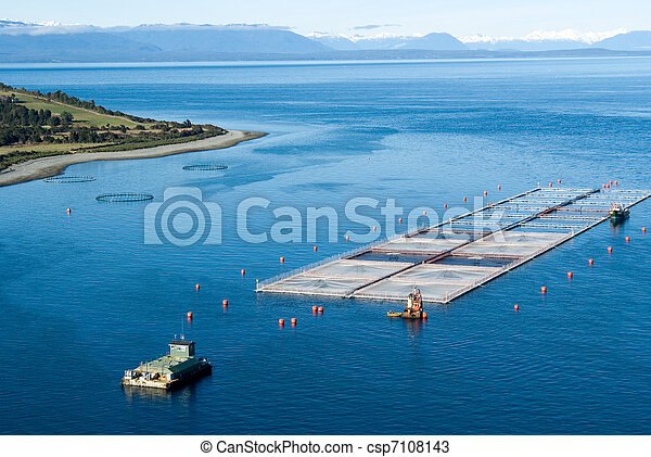 salmon cages on islands in southern Chile - csp7108143