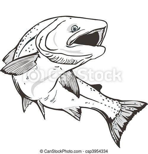 Salmon fish - csp3954334