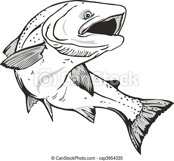 Salmon fish - csp3954335