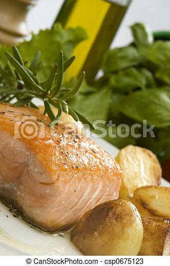 salmon - csp0675123