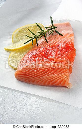 Salmon - csp1330983