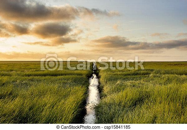 Salt Meadow during sunrise - csp15841185