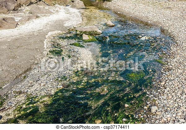 Saltwater Stream 4 - csp37174411