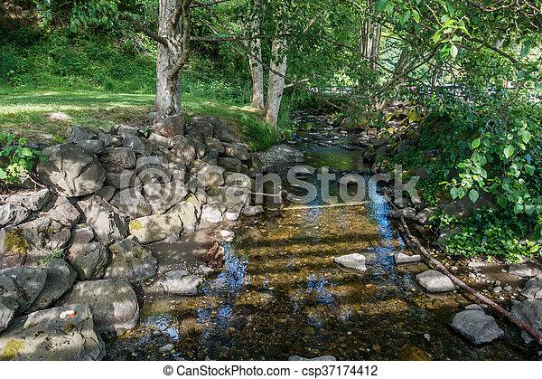 Saltwater Stream 5 - csp37174412