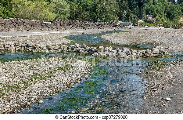 Saltwater Stream 5 - csp37279020