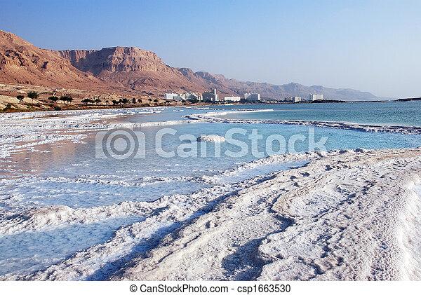Salty iceberg  - csp1663530