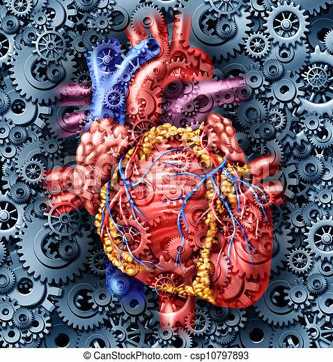 salud corazón, humano - csp10797893