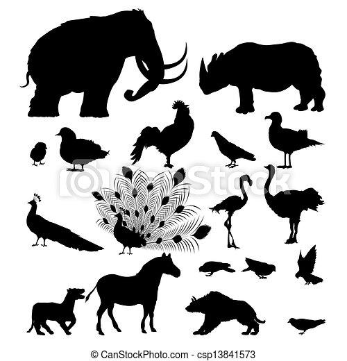 Siluetas animales salvajes - csp13841573