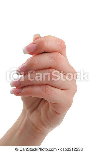 samica, dzierżawa ręka - csp0312233