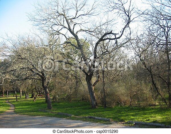 San Antonio Park - csp0015290