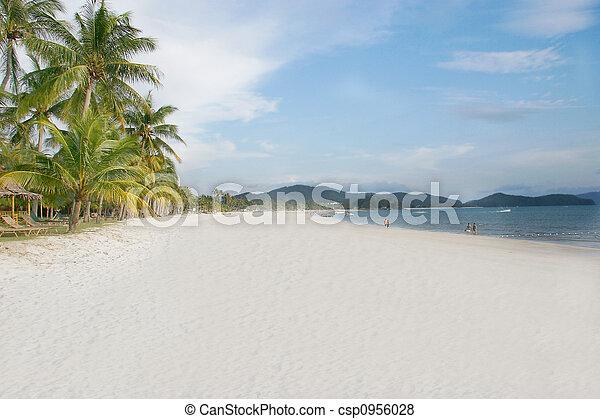 sand beach - csp0956028