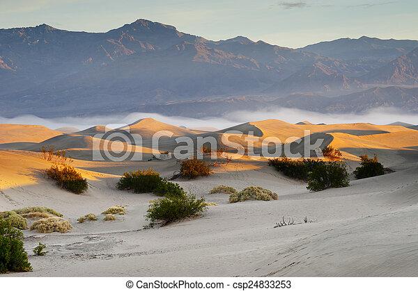 Sand Desert - csp24833253