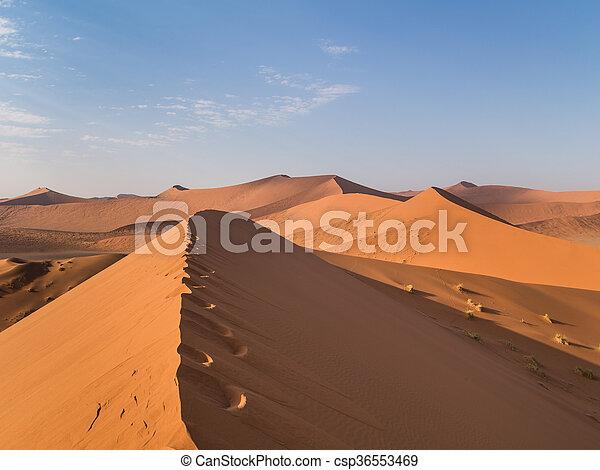 Sand Dune 45 In Sossusvlei Namibia