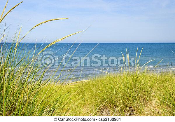 Sand dunes at beach - csp3168984