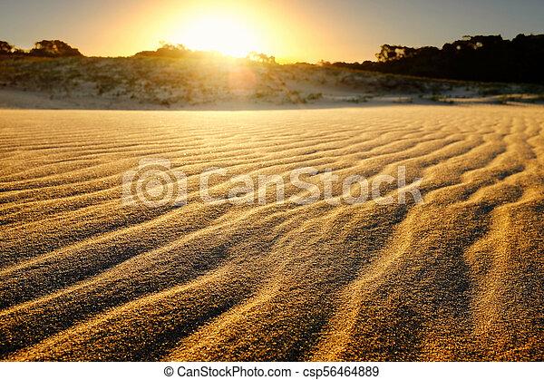 Sand dunes at sunset. - csp56464889
