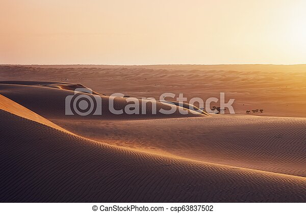 Sand dunes at sunset - csp63837502