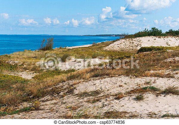 sand dunes covered with grass - csp63774836