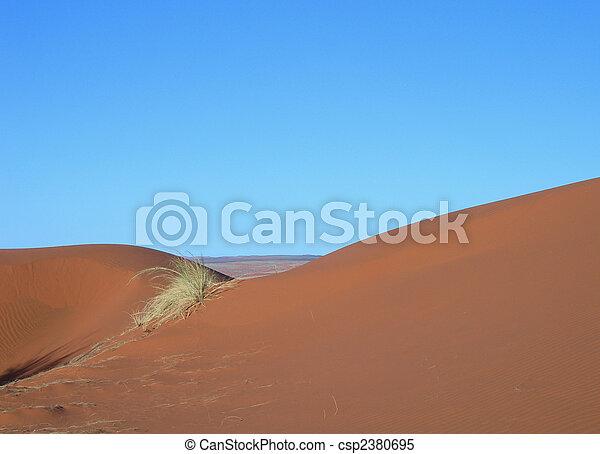 Sand dunes in the Kalahari desert  - csp2380695